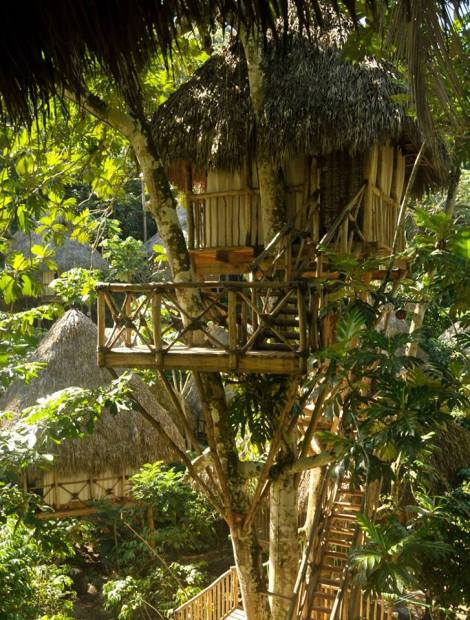 Bamboo hut in tree with thatched roof